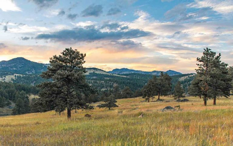 Late-afternoon view toward Rocky Mountain peaks at White Ranch Open Space near Golden, Colorado