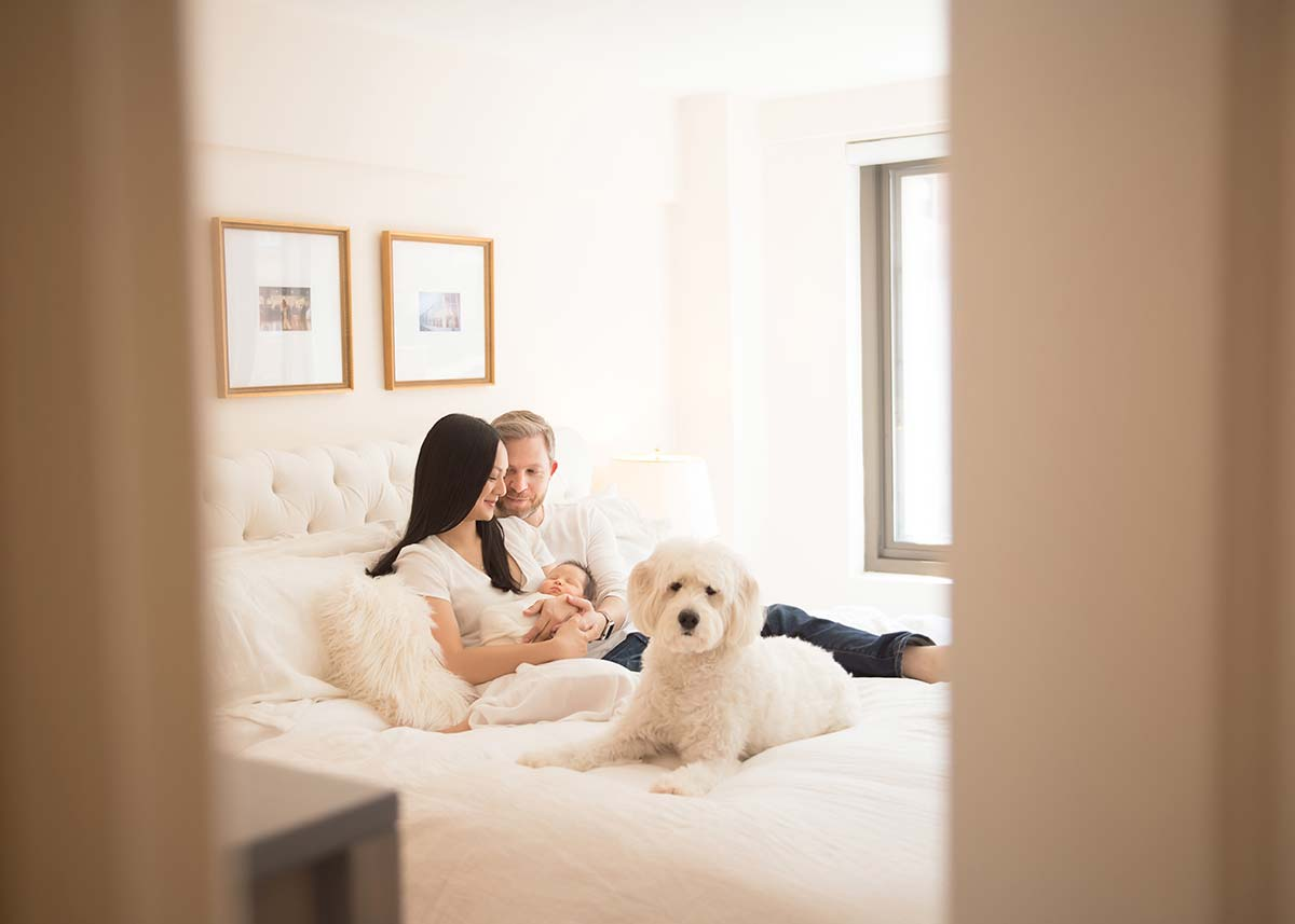 A modern apartment in Stamford, Connecticut is the setting for this lifestyle moment between two parents, their dog and a newborn baby.