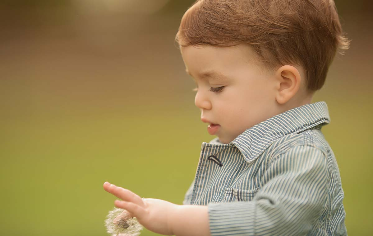 Photo of a boy playing with a dandelion