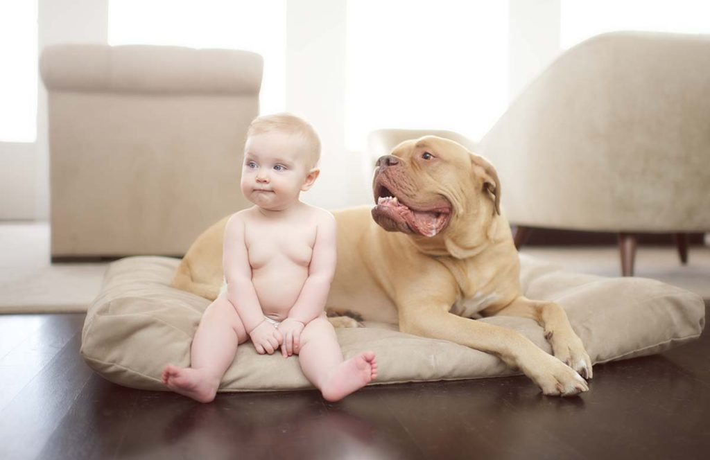 Big dog and a baby sitting together in this adorable baby photo