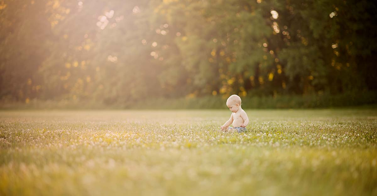 Toddler boy picking flowers in a field during the golden hour